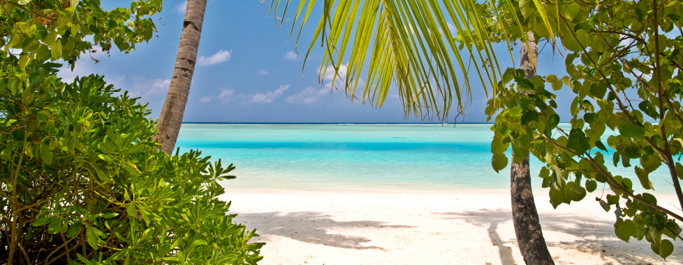 Vivanta by Taj - Coral Reef Maldives, Maldives - Vacances Migros
