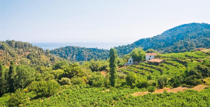 Arrière-pays, Samos