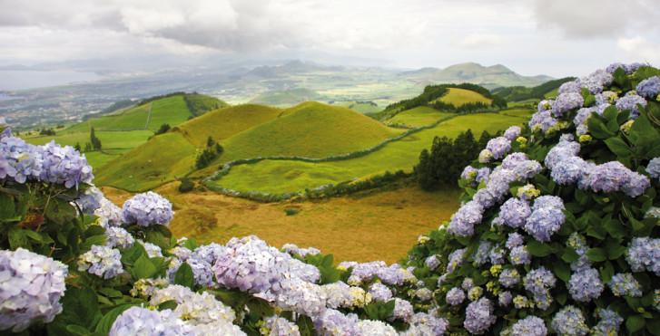 Paysage, Terceira