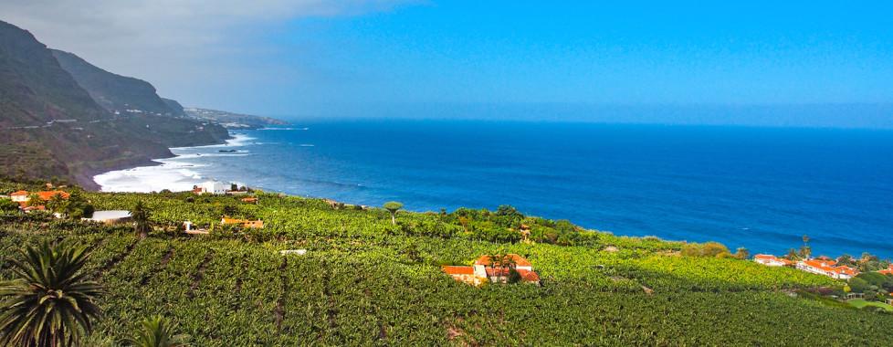 Vue sur la côte nord de Tenerife