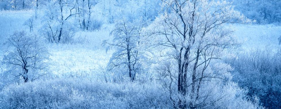 Paysage hivernale près de Walchsee