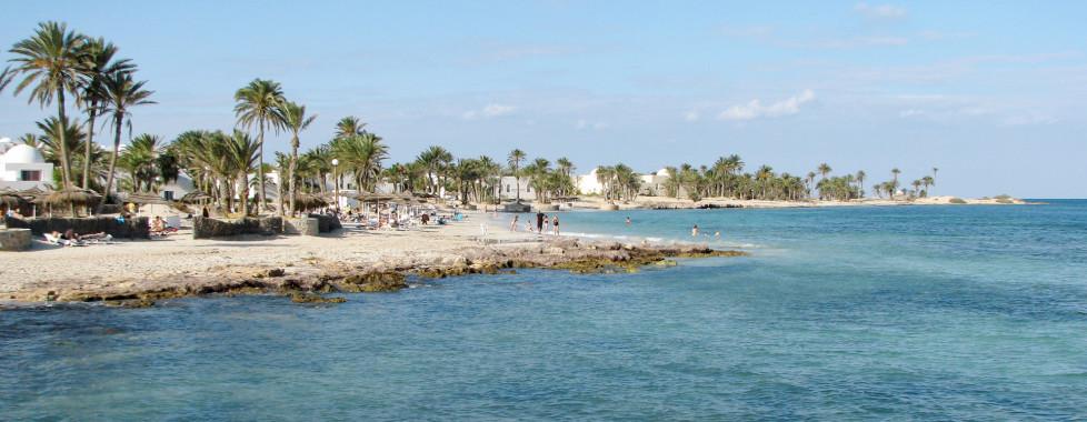 Palmenstrand auf der Insel Djerba