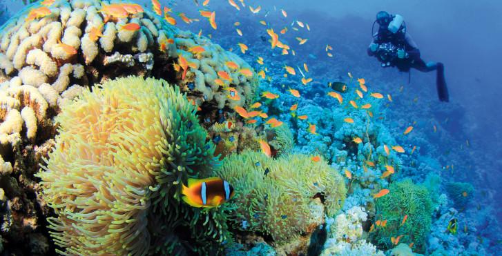 Atoll Lhaviyani