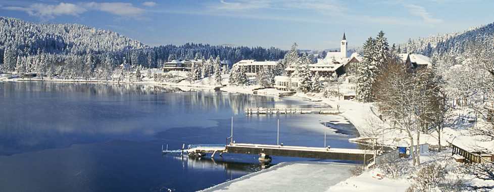 Winterlandschaft Titisee