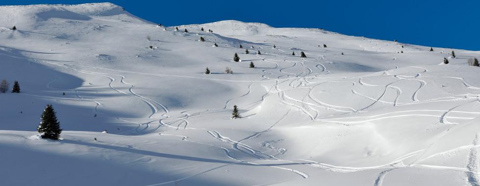Paysage de d'hiver