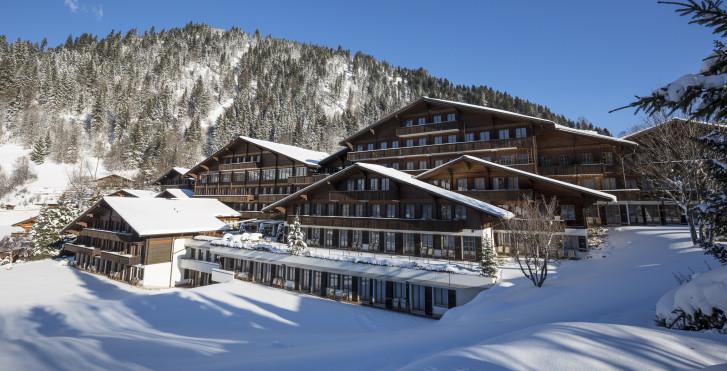 Image 32063924 - Hotel HUUS - Forfait ski