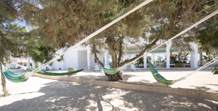 Image 24752036 - The Beach Star Ibiza