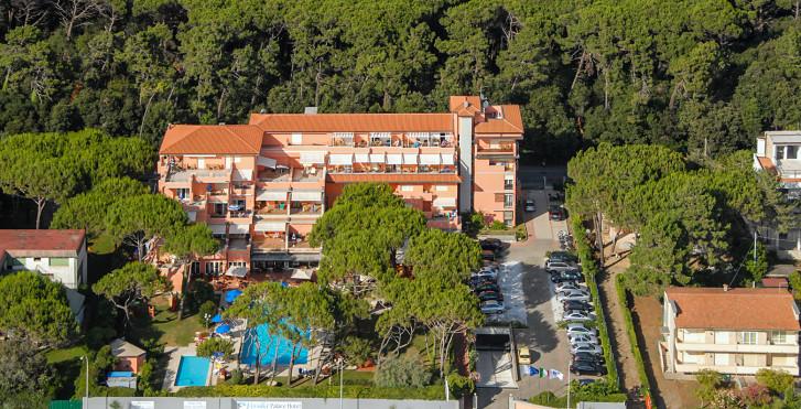 Bild 25631712 - Hotel Versilia Palace