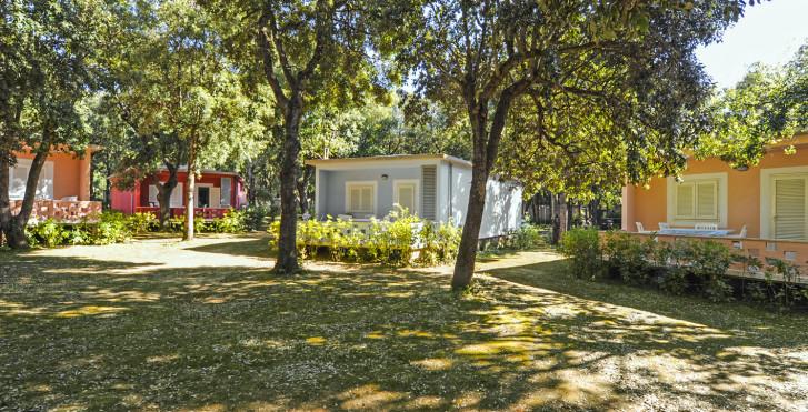 Image 25636726 - Riva degli Etruschi - bungalows