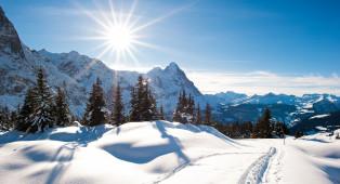 Ferien in der Schweiz - Lago Maggiore (Schweizer Seite)