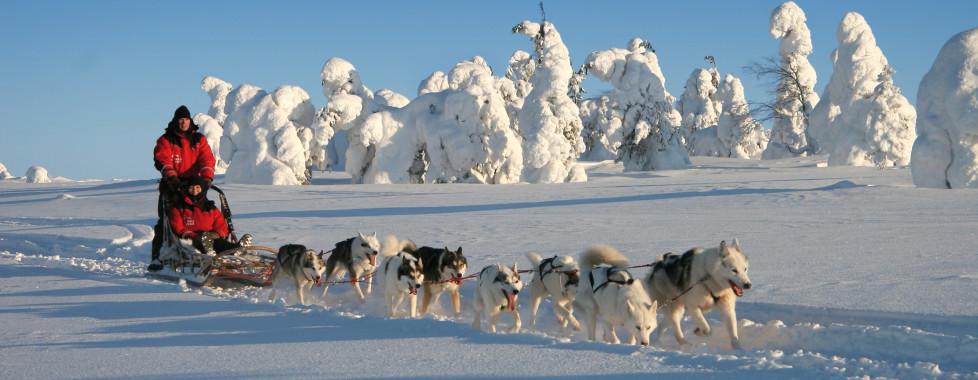 Nordischer Winter