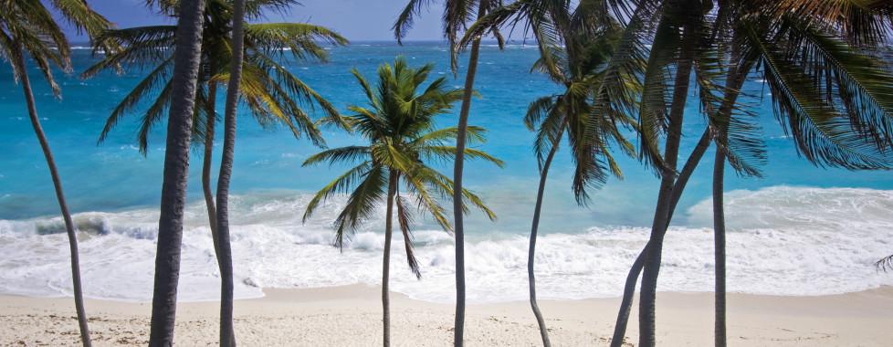 Hôtel Tamarind, Barbade Côte Ouest - Vacances Migros