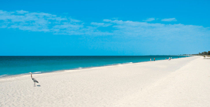 Strand bei Fort Myers