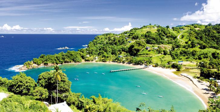 Bucht auf Tobago