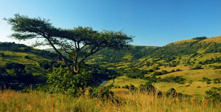 Landschaft, Zululand