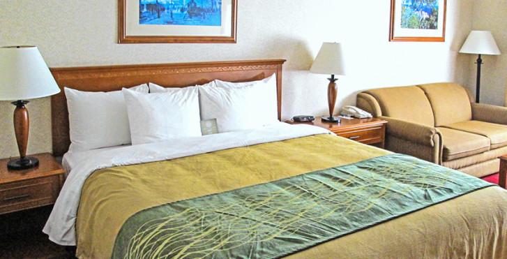 Bild 17240119 - Comfort Inn & Suites