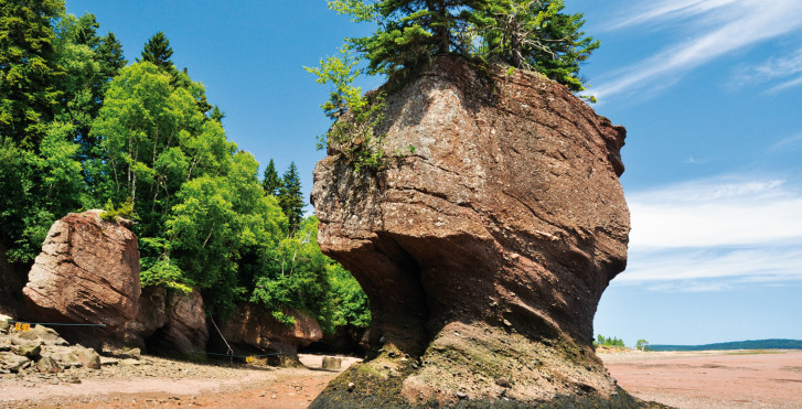 Hopewell Rocks, Moncton