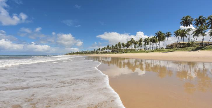 Bild 23680655 - Iberostar Praia do Forte