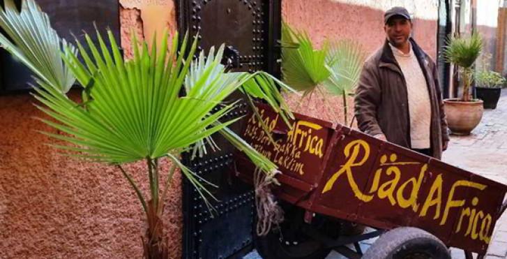 Image 16563919 - Riad Africa