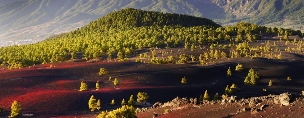 Parador La Palma, La Palma - Vacances Migros
