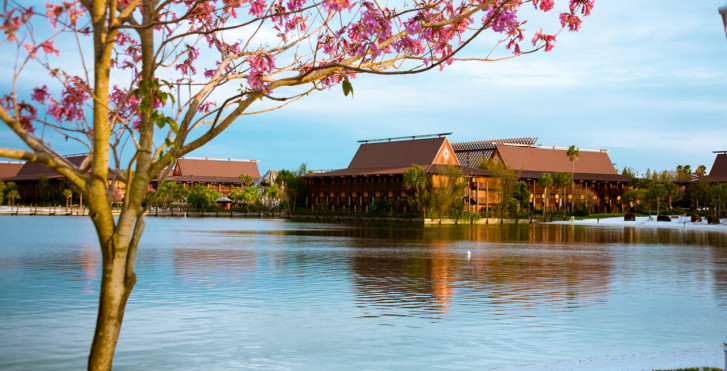 Disney's Polynesian Resort Package