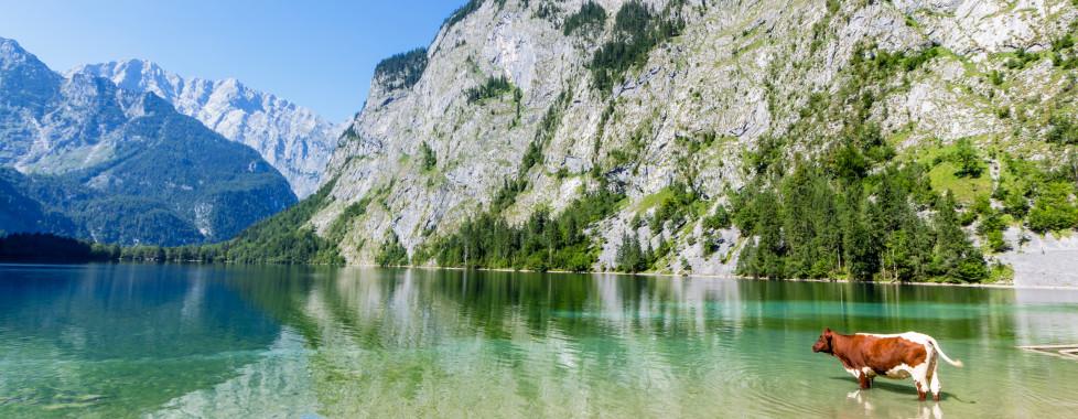 Le Königssee dans le Pays-de-Berchtesgaden