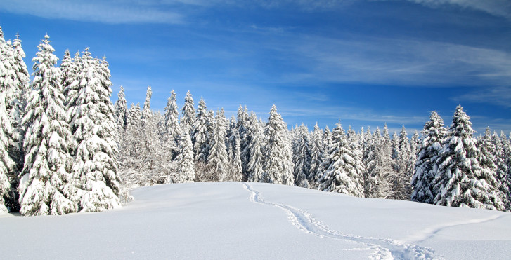 Winter im Jura