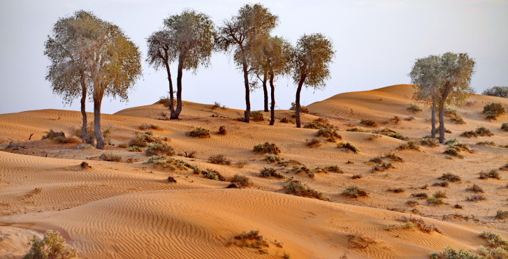 Wüste, Ras Al Khaimah
