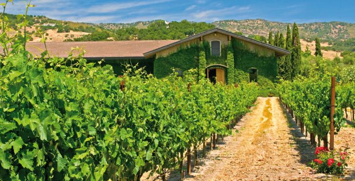 Domaine viticole, Napa Valley