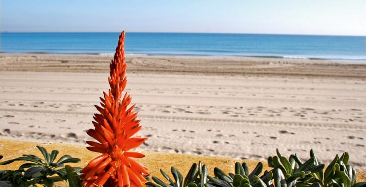 Image 7933552 - Intercontinental La Torre Golf Resort