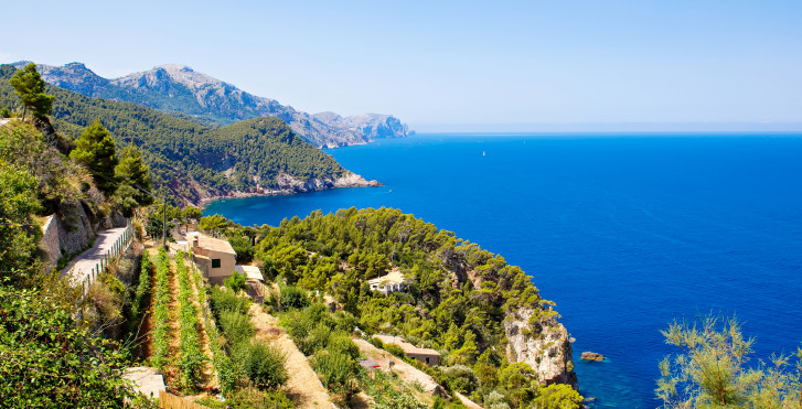 Wandern Mallorca: Iberostar Albufera Playa