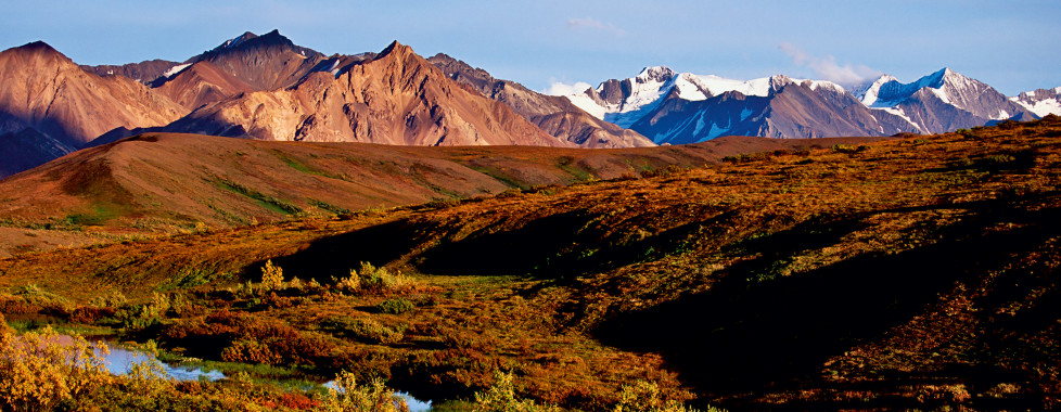 Denali Grizzly Bear Resort, Denali National Park - Migros Ferien