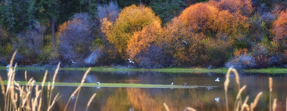 Running Y Ranch, Klamath Falls - Migros Ferien