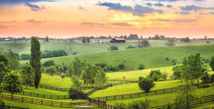 Farm, Louisville