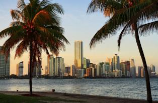 Florida Sunshine (NUR DEUTSCH)