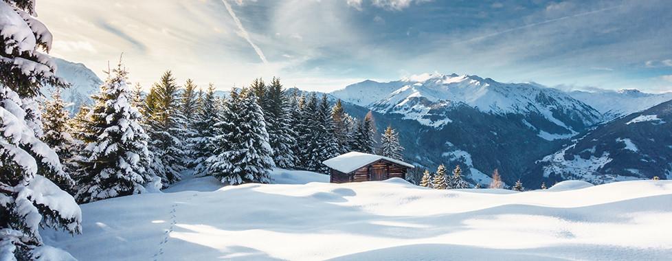 Winterträume
