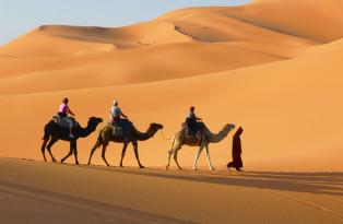 Wüstenluft schnuppern