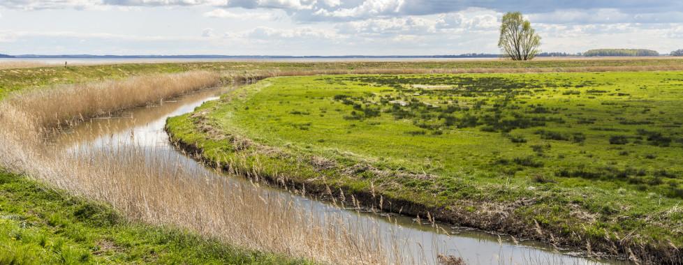 La lagune d'Achterwasser à Zinnowitz