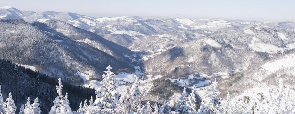 Blick auf den Schwarzwald im Winter
