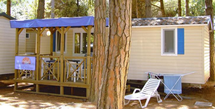 Bild 27572300 - Camping Mare e Pineta