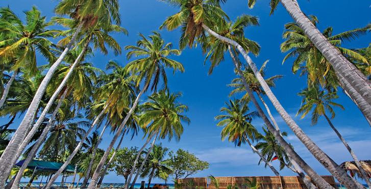 Image 7458812 - Kaani Beach