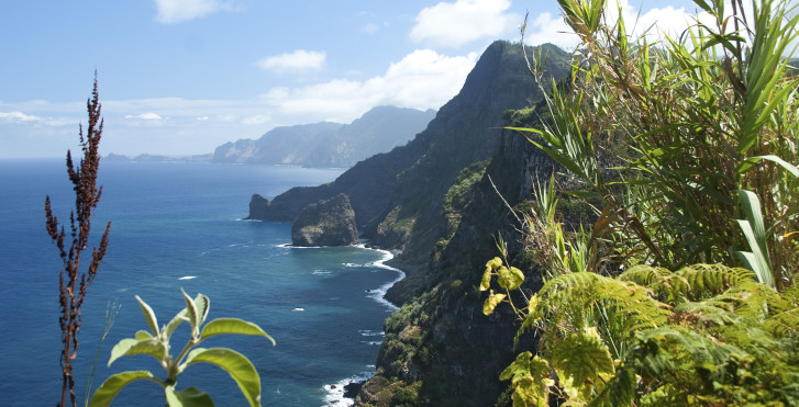 Bild 27326338 - Fly & Drive Madeira