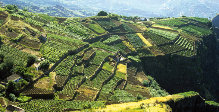 Bild 27326341 - Fly & Drive Madeira