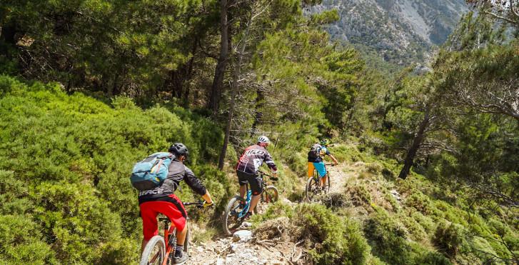 Image 31329033 - Bike & Relax Crète