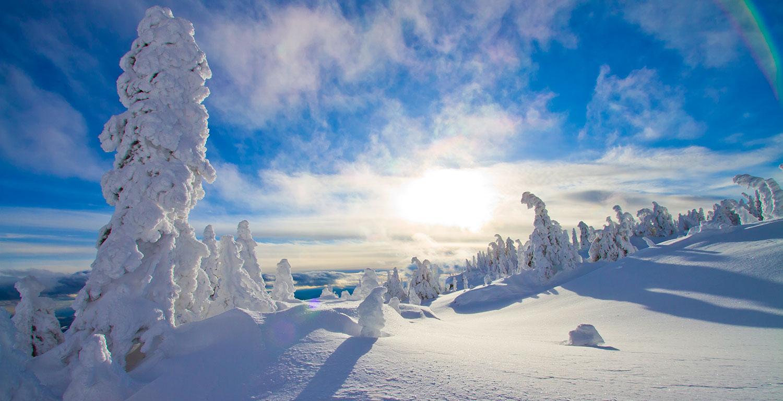 Snow Ghosts - so heissen die vom Wind und Wetter bizarr verformten Bäume die mit ihrer unglaublichen Widerstandskraft den Elementen harren