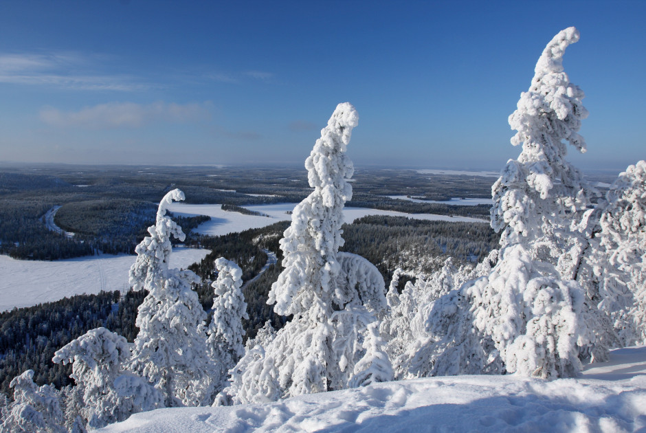 Winterparadies in Lappland