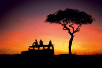 Coucher de soleil pendant un safari au Kenya