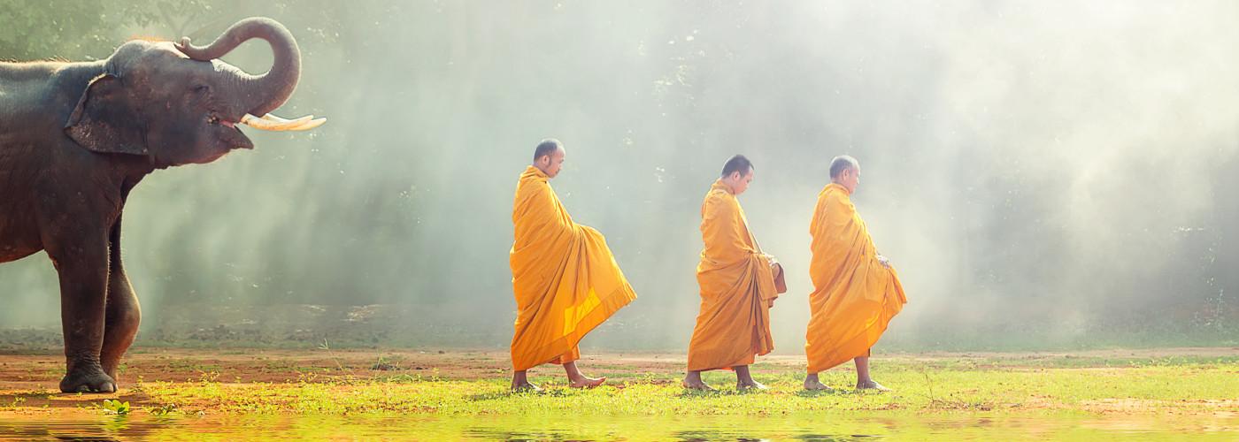 Elefant und Mönche laufen durchs Wasser