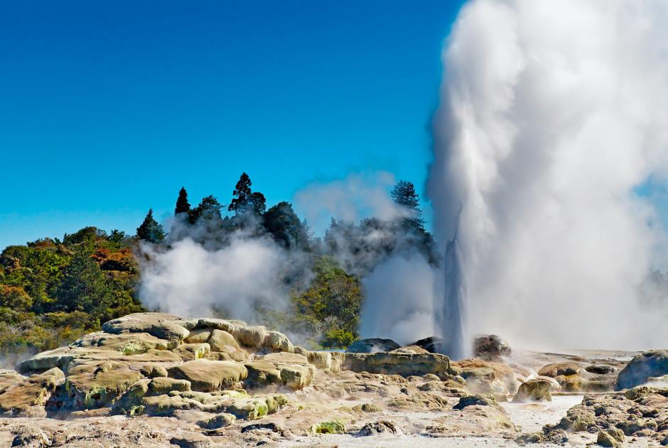 Geysir, Rotorua