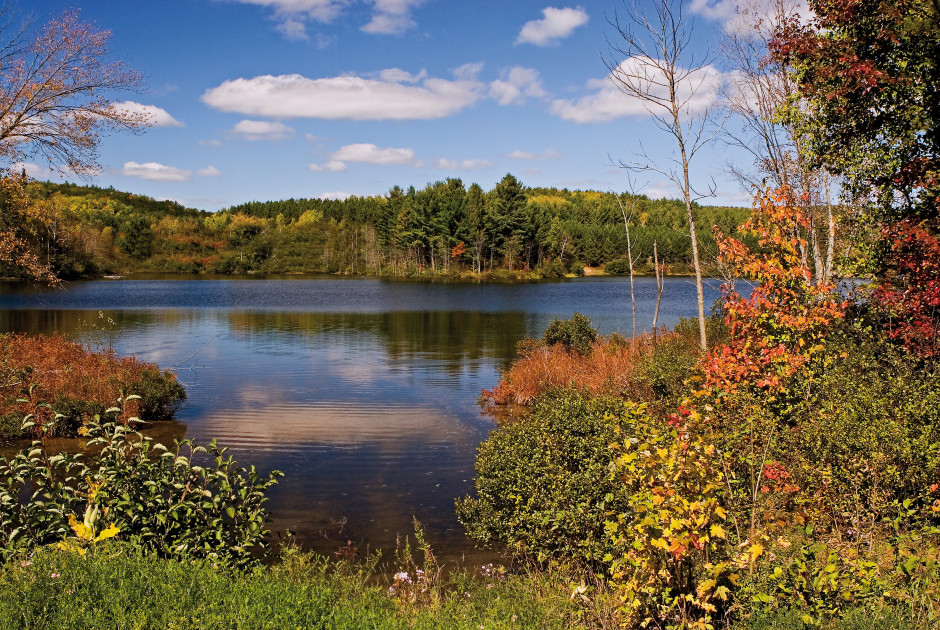 Algonquin Provincialpark